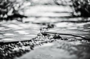 www.k-hphotography.com