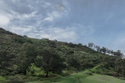 Santiago Canyon 1-23-17