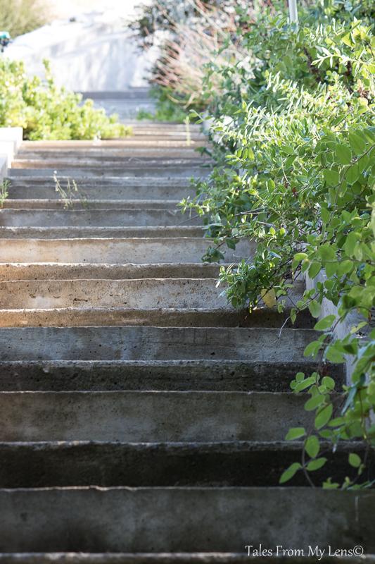 pathway3 (1 of 1)