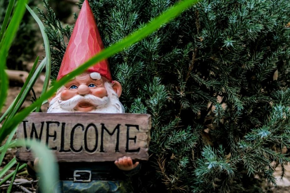gnome (1 of 1)